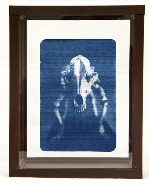, 'Skeleton,' , Soho Photo Gallery
