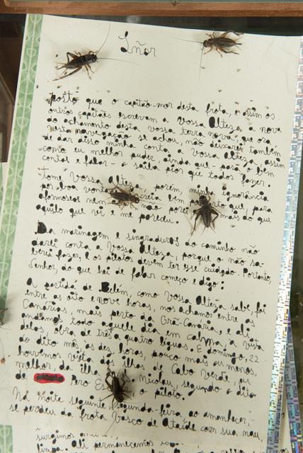 , 'Apólice do Apocalipse (falsely aged handwritten letter 31 pag.),' 2018, Baró Galeria