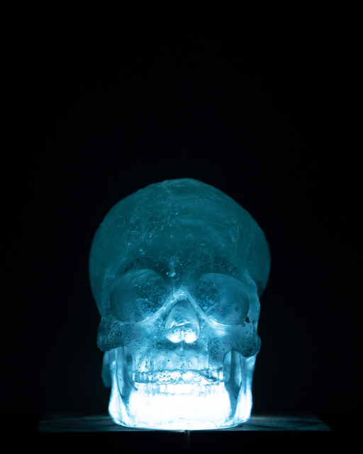 , 'Skull,' 2017, Abe+Okuta