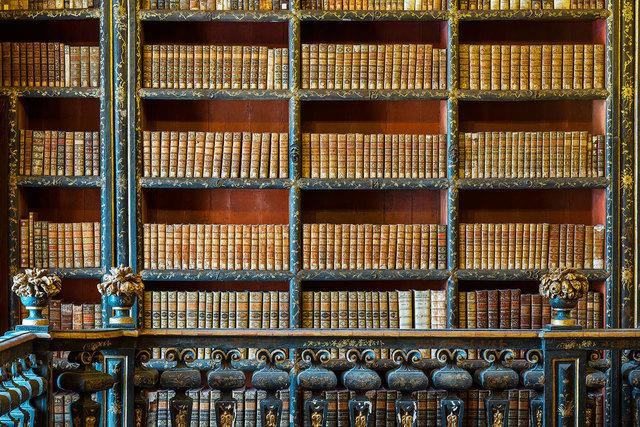 Reinhard Gorner, 'Wooden Flowers, Biblioteca Joanina, Portugal', 2015, Undercurrent Projects