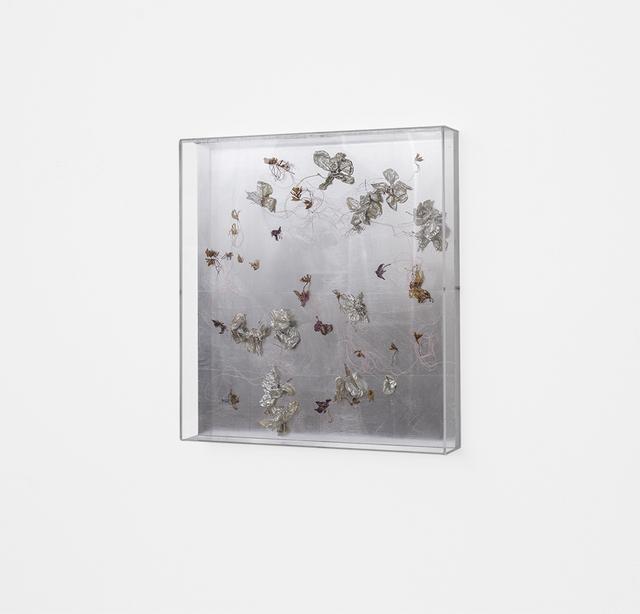 , 'Dried orchid box, no.3, mirror,' 2018, SMAC