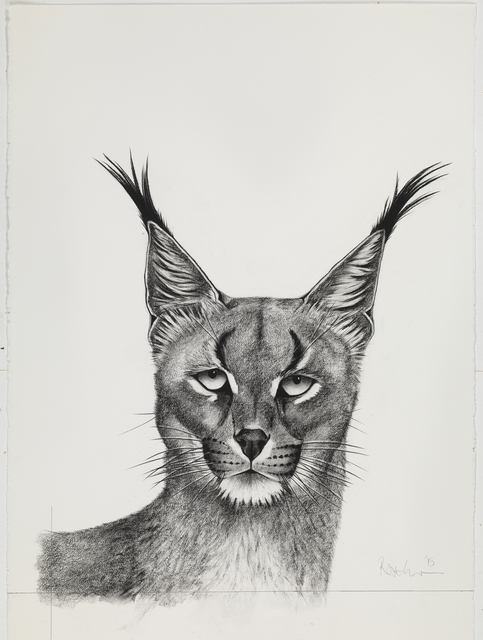 , 'Caracal Looking,' , Sladmore Contemporary