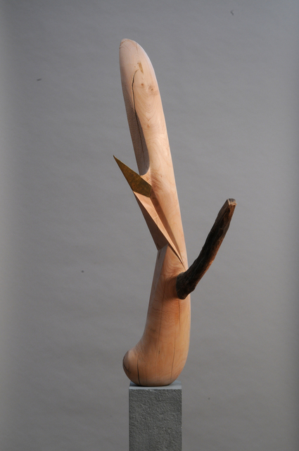 , 'Abstraction #4,' 2010, Roshkowska Galleries