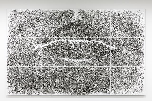 , 'Spine d'acacia - contatto, marzo 2005,' 2005, Marian Goodman Gallery