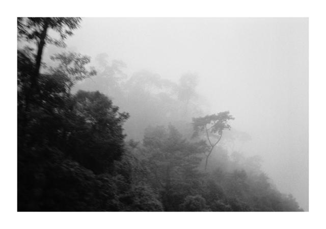 , 'Neblina (Fog),' 2014, Galeria Marília Razuk