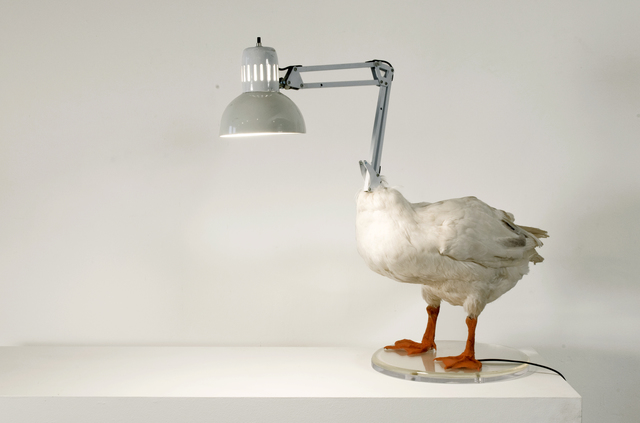 , 'Duck Lamp,' 2004, Carnegie Museum of Art