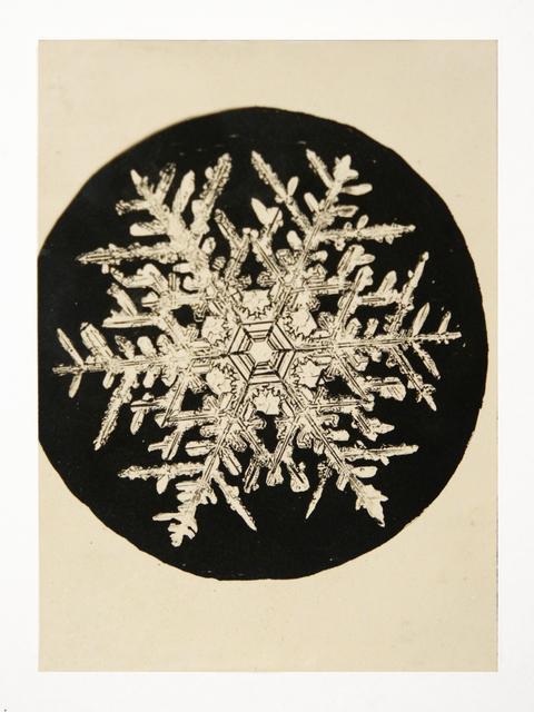 , 'Snowflake,' 1888-1927, Richard Levy Gallery