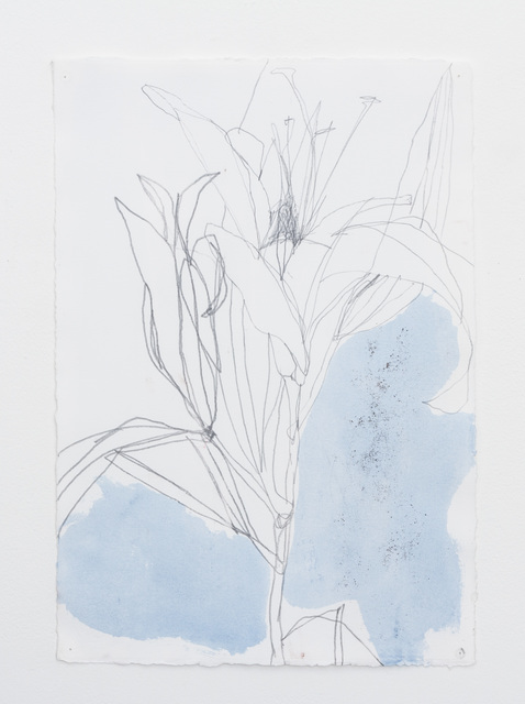 , 'Untitled 25.15,' 2015, Barry Whistler Gallery
