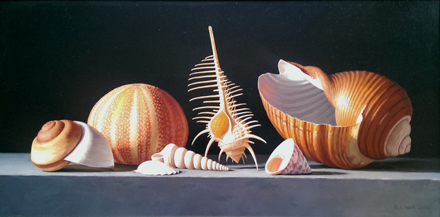 , 'Sea Urchin with Venus Comb and Tonna Shell,' , Cyril Gerber Fine Art/ Compass Gallery