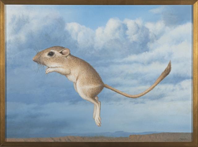 , 'Kangaroo Mouse,' 2014-2016, J. Cacciola Gallery
