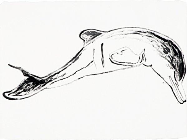 , 'Plata River Dolphin,' , Dean Borghi Fine Art