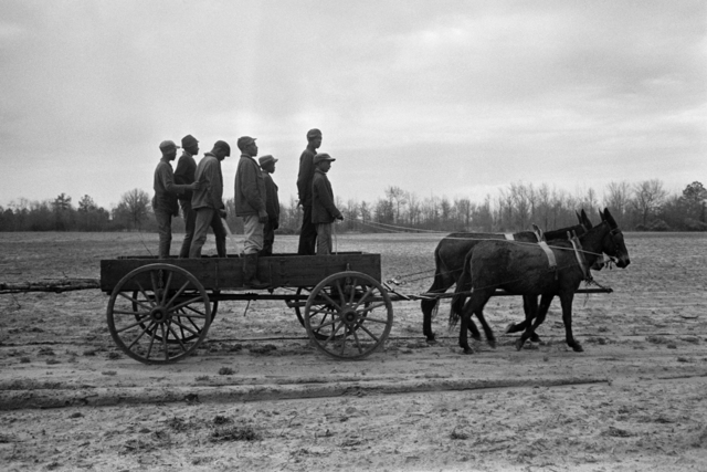 , 'Untitled, Sharecroppers, South Carolina (7 men standing in a wagon),' 1965, Robert Klein Gallery
