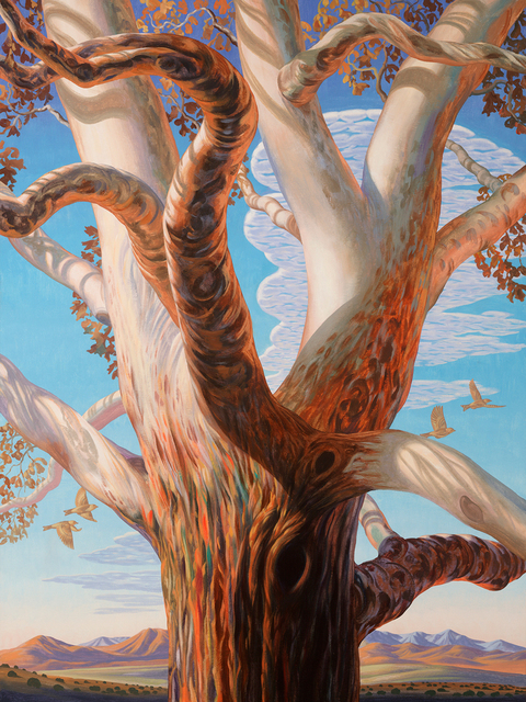 ", '""Western Sycamorum"",' 2018, Maxwell Alexander Gallery"