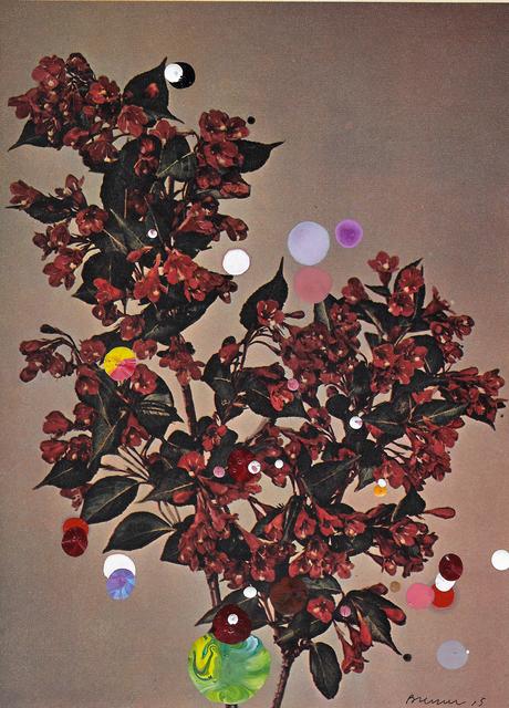 , 'Diervilla (Weigelia) Eva Rathke,' 2015, Galerie Ron Mandos