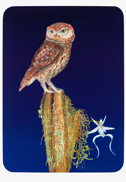 Michael Krueger, 'Owl & The Orchid', 2020, Painting, Acrylic on linen, Cade Tompkins Projects