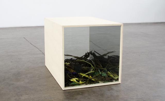 , 'Caixa de paisagem,' 2015, Baró Galeria