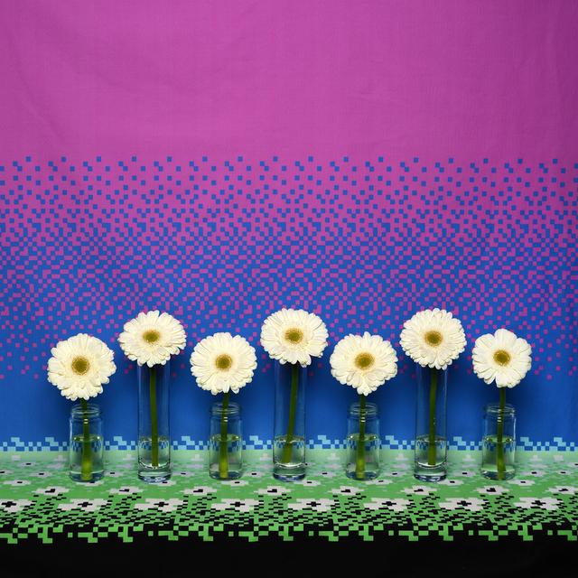, 'Flowers and Fabric (8-Bit Flowers),' 2018, Winston Wächter Fine Art