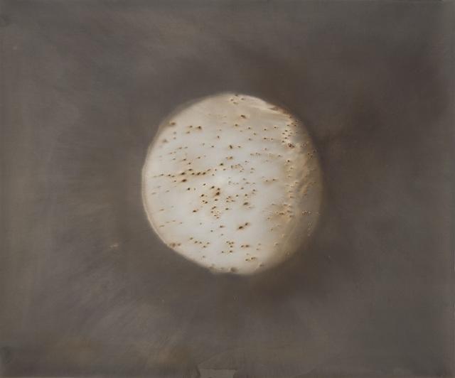 , 'Meditation on the Northern Hemisphere 4,' 2011, photo-eye Gallery