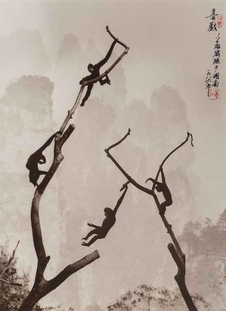 Don Hong-Oai, 'Gibbons at Play, Tianzi Mountain', 1986-printed later, Heritage Auctions