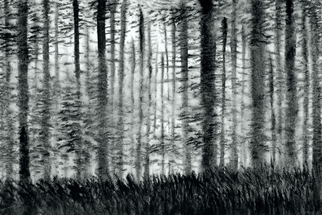 XiaoHai Zhao 赵小海, 'The Woods No.2', 2010, White Space Art Asia