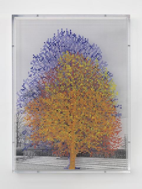 Charles Gaines, 'Numbers and Trees: Tiergarten Series II: Tree #4', 2018, TAG ARTS