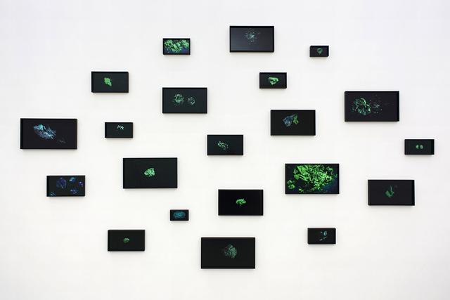 , 'RM #1-21,' 2014, Simon Preston Gallery