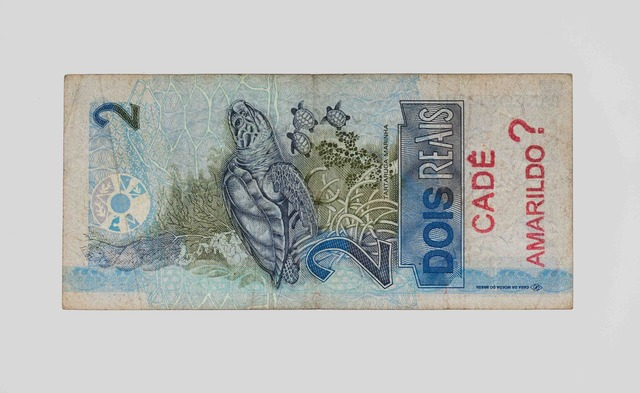 , 'Insertions into Ideological Circuits 2: Banknote Project Inserções em circuitos ideológicos 2: Projeto Cédula,' 2013, Galeria Luisa Strina