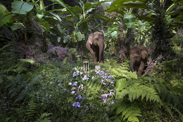 , 'Gardeners of Eden 3,' 2015, Brun Fine Art