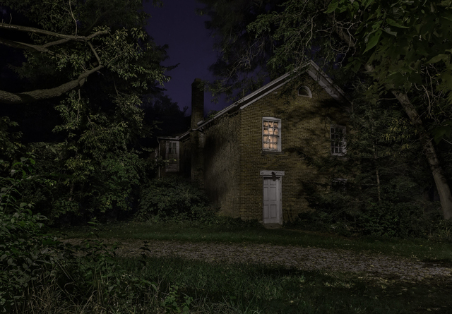 Jeanine Michna-Bales, 'Walk Along the Ridge. Between the Maumee and St. Joseph Rivers, Braun-Leslie House, Fort Wayne, Indiana', 2014, PDNB Gallery