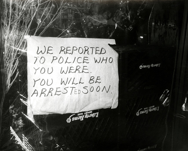 , 'We Reported You to the Police......,' 1981, Hedges Projects