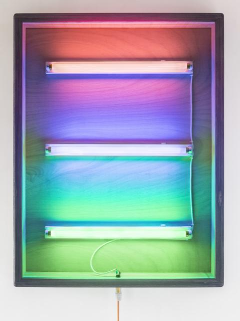 , 'Internal structure No.3,' 2016, Blindspot Gallery