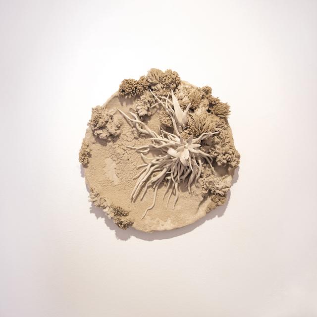 , 'Ghost Plate,' 2017, Anima-Mundi