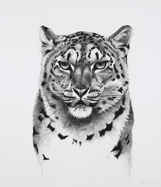 , '20. Snow Leopard,' 2018, Sladmore Contemporary