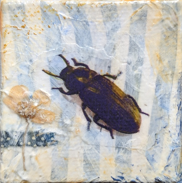 , 'Black Beetle #3,' , Sparrow Gallery