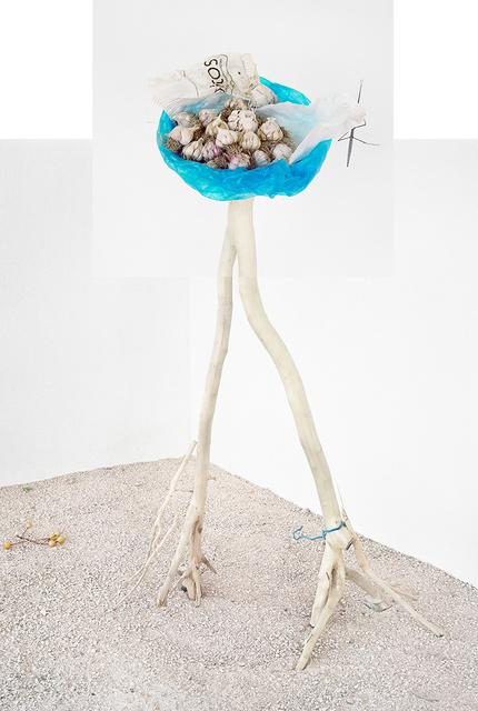 , 'Garlic (Blue Bag),' 2018, Carrie Haddad Gallery