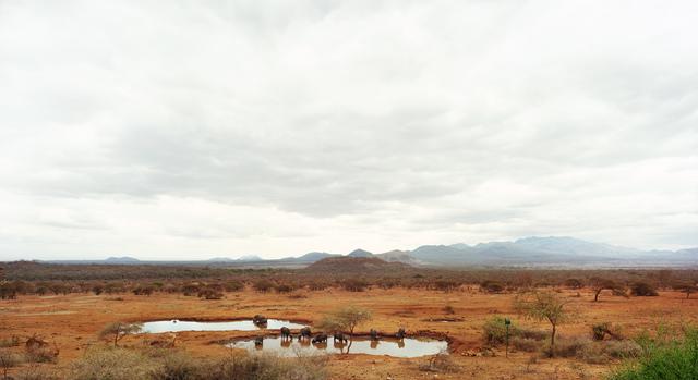 , 'Tsavo West III (Kenya),' 2009, Danziger Gallery