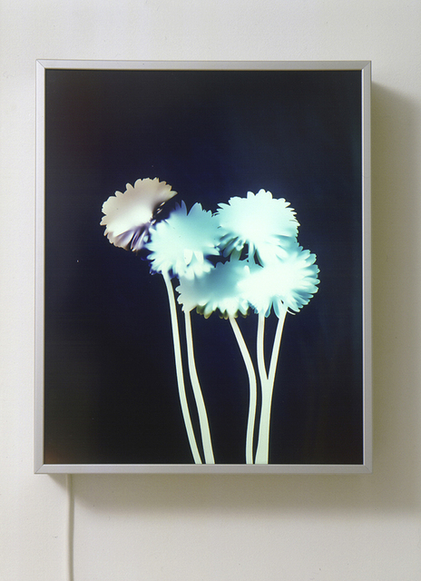 , 'Untitled (Experiments with Light),' 2001, Mai 36 Galerie