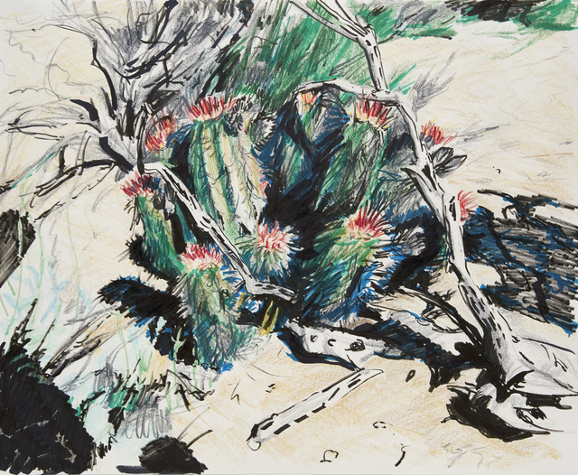 Eric LoPresti, 'Cacti, California', 2017, Burning in Water