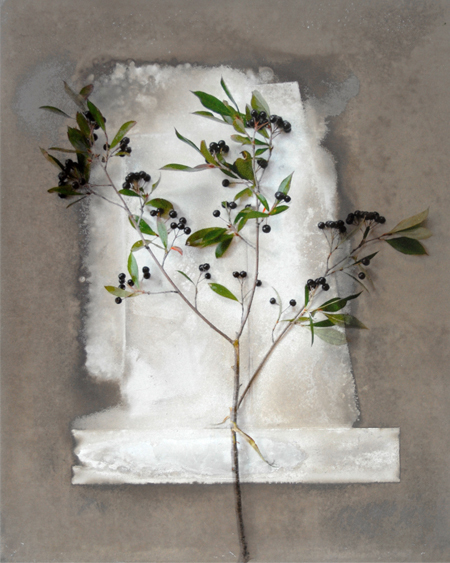 , 'Blackberry Branch,' , Alan Klotz Gallery