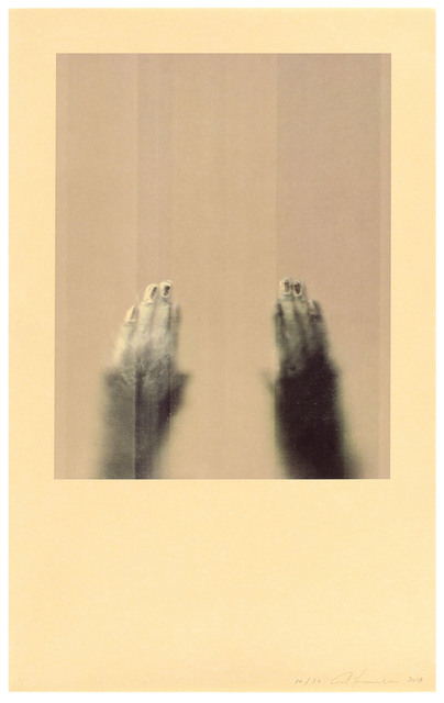 Ann Hamilton, 'Assam Macaque', 2021, Print, 5 color lithograph, Gemini G.E.L.