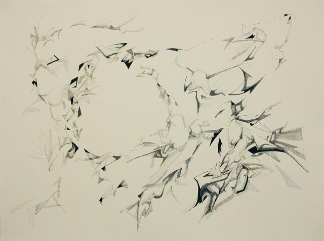 Gianluca Bianchino, 'Murmurations #5', 2014, Mana Contemporary