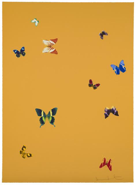 Damien Hirst, 'Your Beauty', 2015, Reuben Colley Fine Art