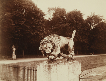 Eugène Atget, 'Lion, St. Cloud,' ca. 1920, Phillips: The Odyssey of Collecting