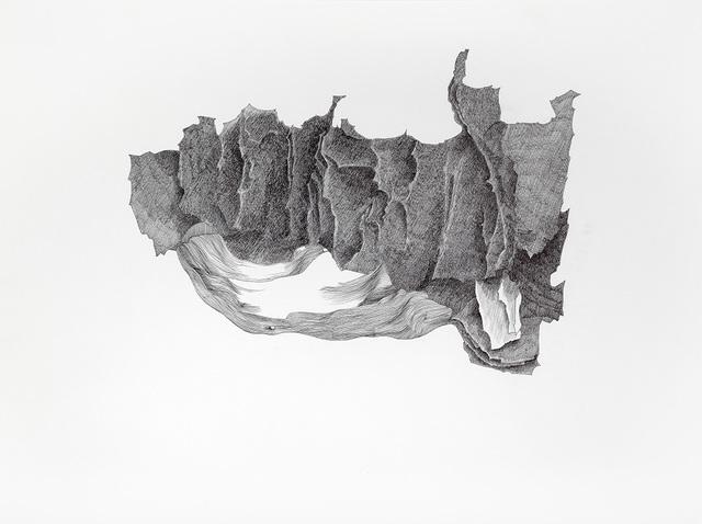 , 'Morfogenesi da Albrecht Durer,' 2015, Alberto Peola