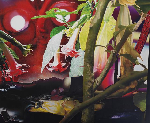 , 'Still Light,' , (re)D. Gallery