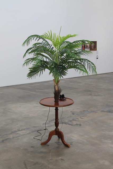 , 'Exoticism #1,' 2014, Baginski, Galeria/Projectos