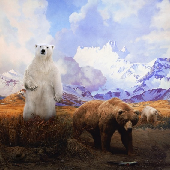 , 'Polar Bear, Grizzly Bear and Grolar Bear,' 2017, ARC ONE Gallery