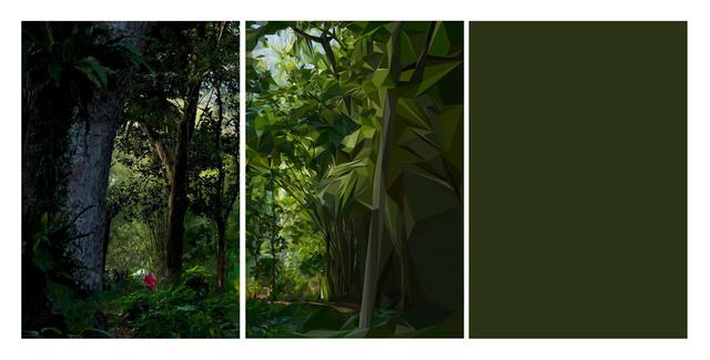 """, 'Da série """"Cristalização da Paisagem"""",  Rio de Janeiro, Setembro de 2011 [From the series """"Landscape Crystallization"""",  Rio de Janeiro, September 2011],' 2012, Casa Triângulo"""