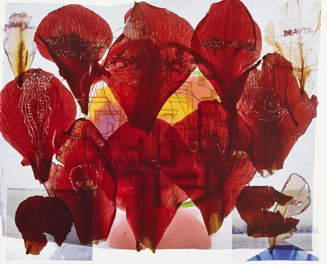 , 'Archives I,' 2013, Galleria Fumagalli
