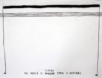, 'My Voice is Closer Than it Appears,' 2015, Carroll / Fletcher